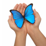 MRKH butterfly in hands